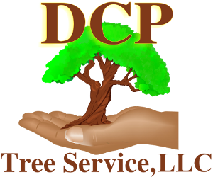 DCP Tree Service, LLC - Frequently Asked Questions